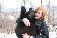 MK Ambassador, Liz Stout, Describes Analyzing the Denning Habitat of Black Bears